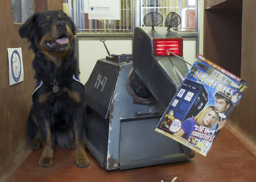 K-9 visited Battersea Dog's Home on launch day to hand out free copies to his canine pals.